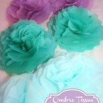 Ombre Tissue Paper Flowers