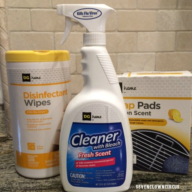 dollar general cleaning supplies