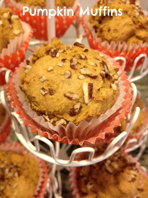 2 ingredient pumpkin muffin recipe
