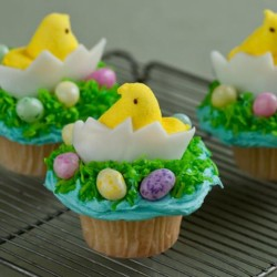 chick and egg cupcakes