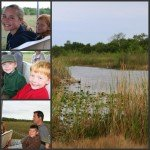 Wordful Wednesday:  Florida Vacation Issue III-The Everglades