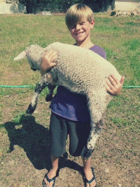 garrett with lamb