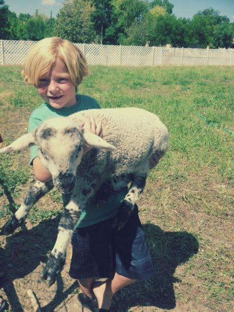 jacob with lamb