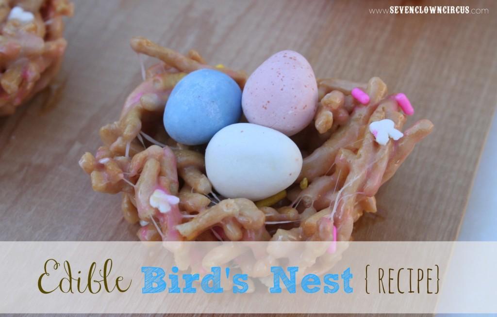 Edible Bird's Nest
