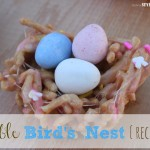 Edible Bird's Nest {recipe}
