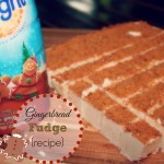 Gingerbread Fudge {recipe}
